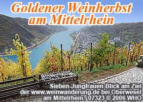 Ziel der geführten Weinwanderung am Sieben-Jungfrauen-Blick bei Oberwesel am Rhein